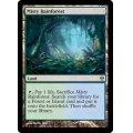 [英語版/日本語版]《霧深い雨林/Misty Rainforest》(ZEN)