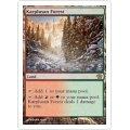 [英語版/日本語版]《カープルーザンの森/Karplusan Forest》(9ED)
