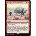 [英語版/日本語版]《分岐変容/Divergent Transformations》(C16)