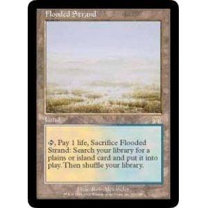 画像1: [日本語版]《溢れかえる岸辺/Flooded Strand》(ONS)