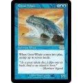 [英語版/日本語版]《巨大鯨/Great Whale》(ULG)